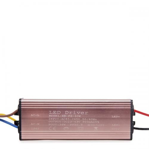 Driver No Dimable Proyector LED 30W